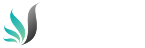 Logo_WebSolutionsToGo_weiss_Transparent_klein